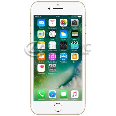 Apple iPhone 7 (A1778) 256Gb LTE Gold - Цифрус