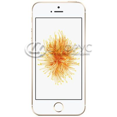Apple iPhone SE (A1723) 32Gb LTE Gold - Цифрус