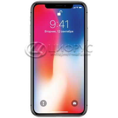 Apple iPhone X 256Gb LTE Grey - Цифрус